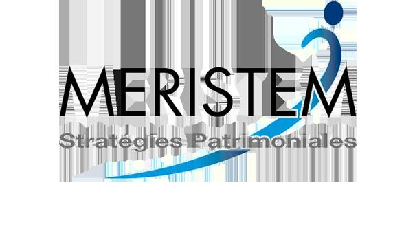 Notre logo fait peau neuve et devient Meristem Stratégies Patrimoniales